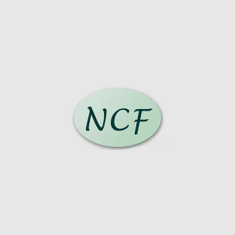 Newcomen Collett Foundation Logo